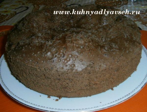шоколадный бисквит-шарлотка