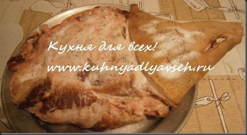 svinaya-lopatka-zapechyonnaya-v-rukave